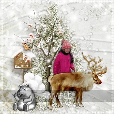 Winterwonderland_ct4