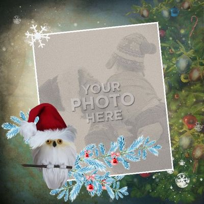12x12_snowydreams_t8-004