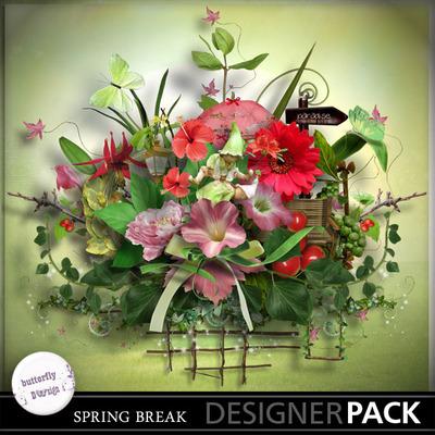 Butterflydsign_springbreak_pv_memo