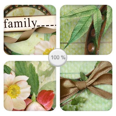 My_family_13