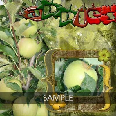 N4d_apples_cb_bg_copy