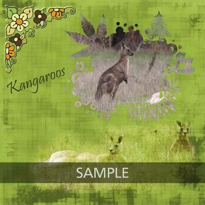 N4d_annette_kangaroos__copy
