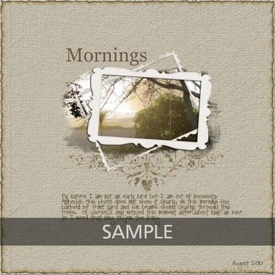N4d_tam_2010-august-mornings_copy