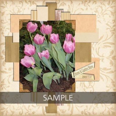 N4d_canpeg_200901tulip_800x600__copy