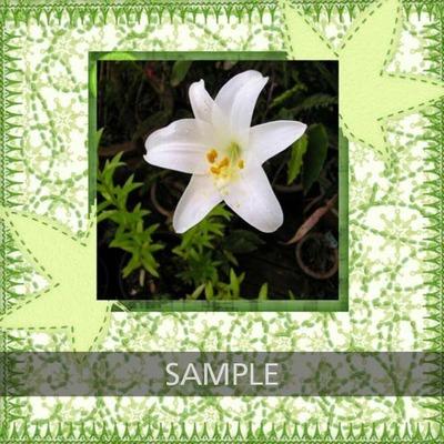 N4d_annette_flower_cb_copy