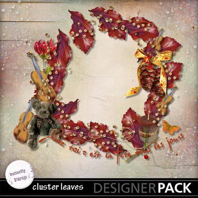 Butterflydsign_clustleaves_pv_memo