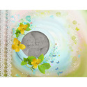 8x11_springblossom_book-001_small