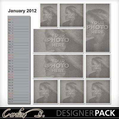 2012_12x12_long_template2-001