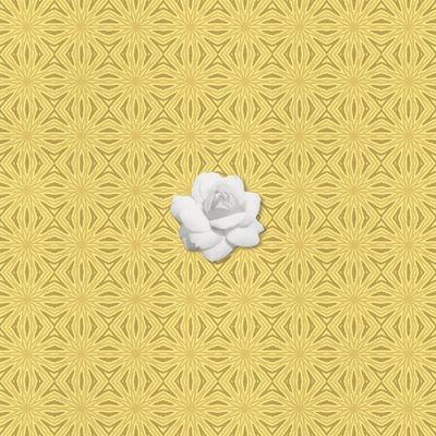 Shades_of_yellow_photobook-024
