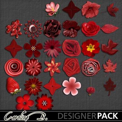 A_tomato_color_bundle_1_6