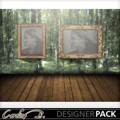 Rain_forest_8x11_album-002