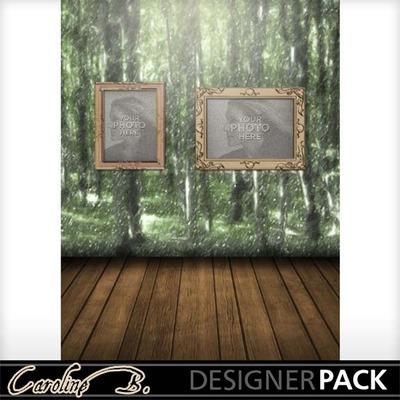 Rain_forest_11x8_album-002