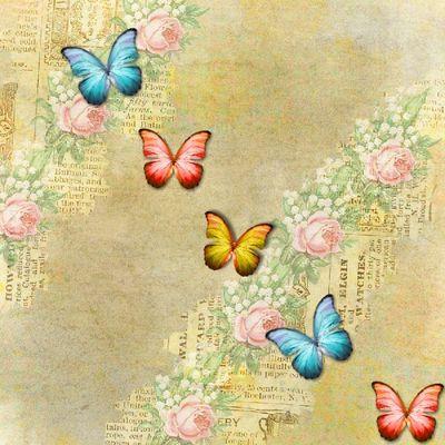 Butterfly_photobook-022