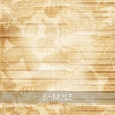 Sample_1c