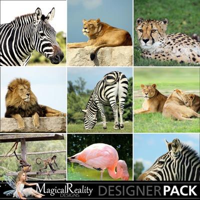 Animal-backgrounds-prev