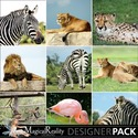 Animal-backgrounds-prev_small