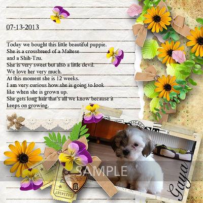 My_diary_2