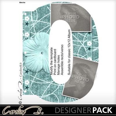 Album_page_11x8_number_0-001_copy