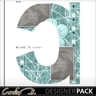 Album_page_11x8_letter_c-002_copy