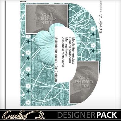 Album_page_11x8_letter_d-001_copy
