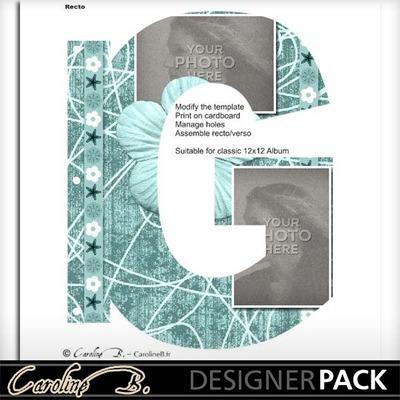 Album_page_11x8_letter_g-001_copy