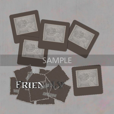 Friendly_album-001-002