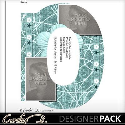 Album_page_11x8_letter_o-001_copy