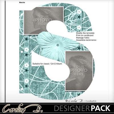 Album_page_11x8_letter_s-001_copy
