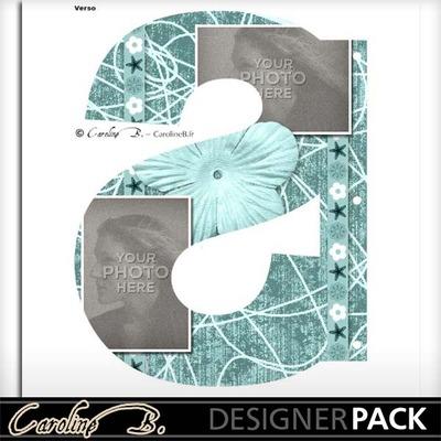 Album_page_11x8_letter_s-002_copy
