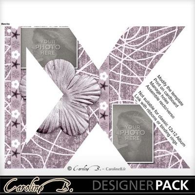 Album_page_8x11_letter_x-001_copy