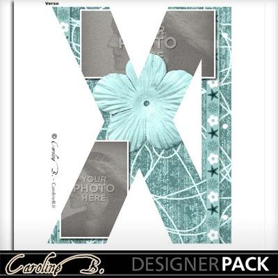 Album_page_11x8_letter_x-002_copy