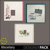 Hsa_miscellany_qp_pv_medium