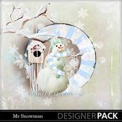 Mr_snowman_medium