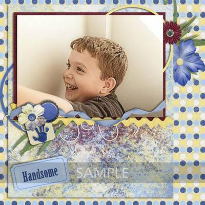 Handsomem-06