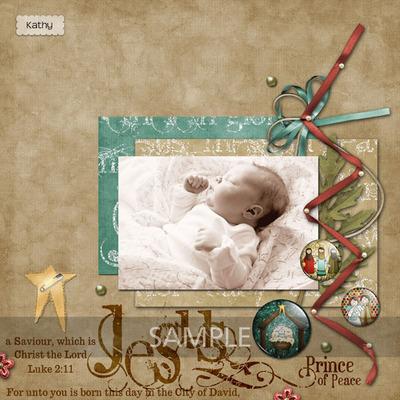 Newbornkingbundle17