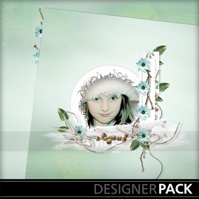 Snow_flakeqp_02a