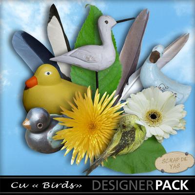 Scrapdeyas_cubirds_pv