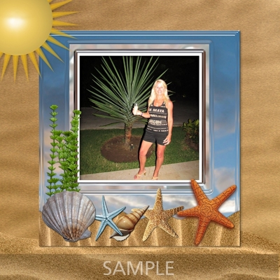 Tropical_beach_frames-02