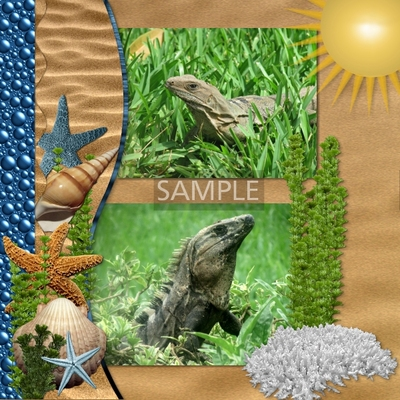 Tropical_beach_bundle-08