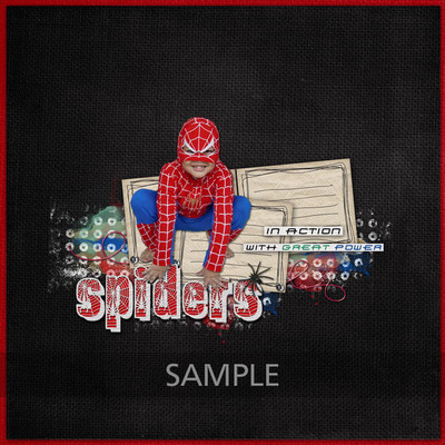 Web_image_-_sample7