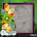 12x12_vibrantcolors_temp4-001_small