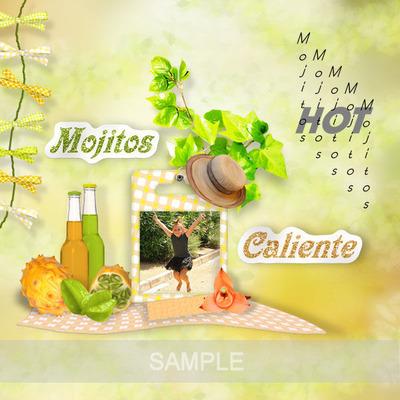 Msp_mojito_page5