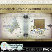 Abeautifulpicture_bookcover-prev_medium