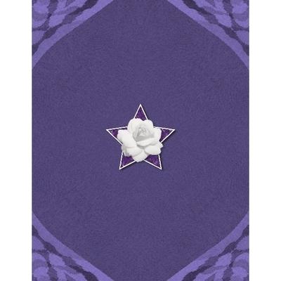 Shades_of_purple_8x11_photobook-024