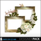 Frame_cluster_preview_medium