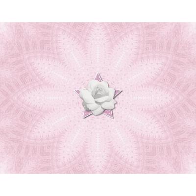 Shades_of_pink_11x8_photobook-024