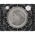 Shades_of_black_11x8_photobook-001_small