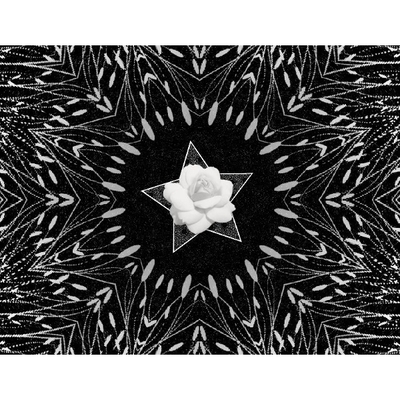 Shades_of_black_11x8_photobook-024
