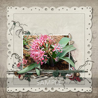 Weeds_wildflower_02