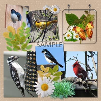 Love_of_nature_plaques-02